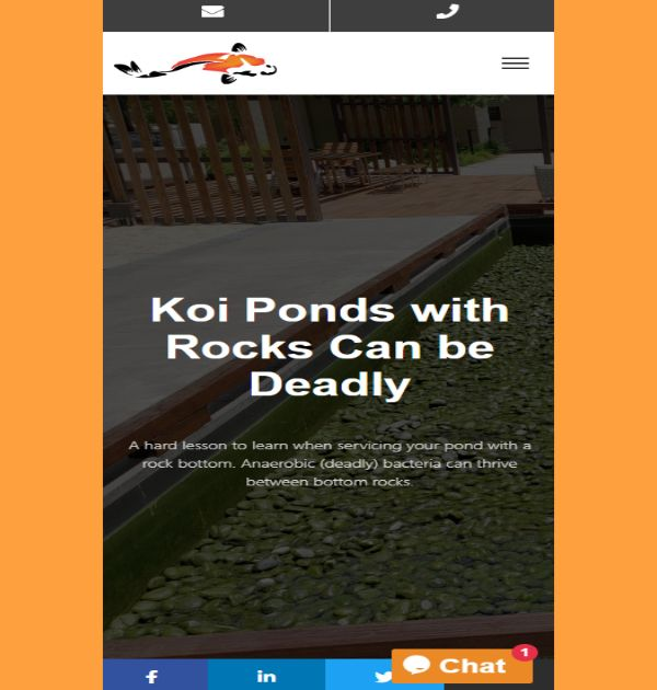 Koiology (Website) - Kreative Tek Solutions